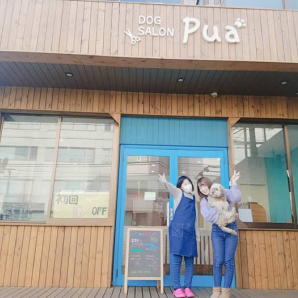 DOG SALON Pua